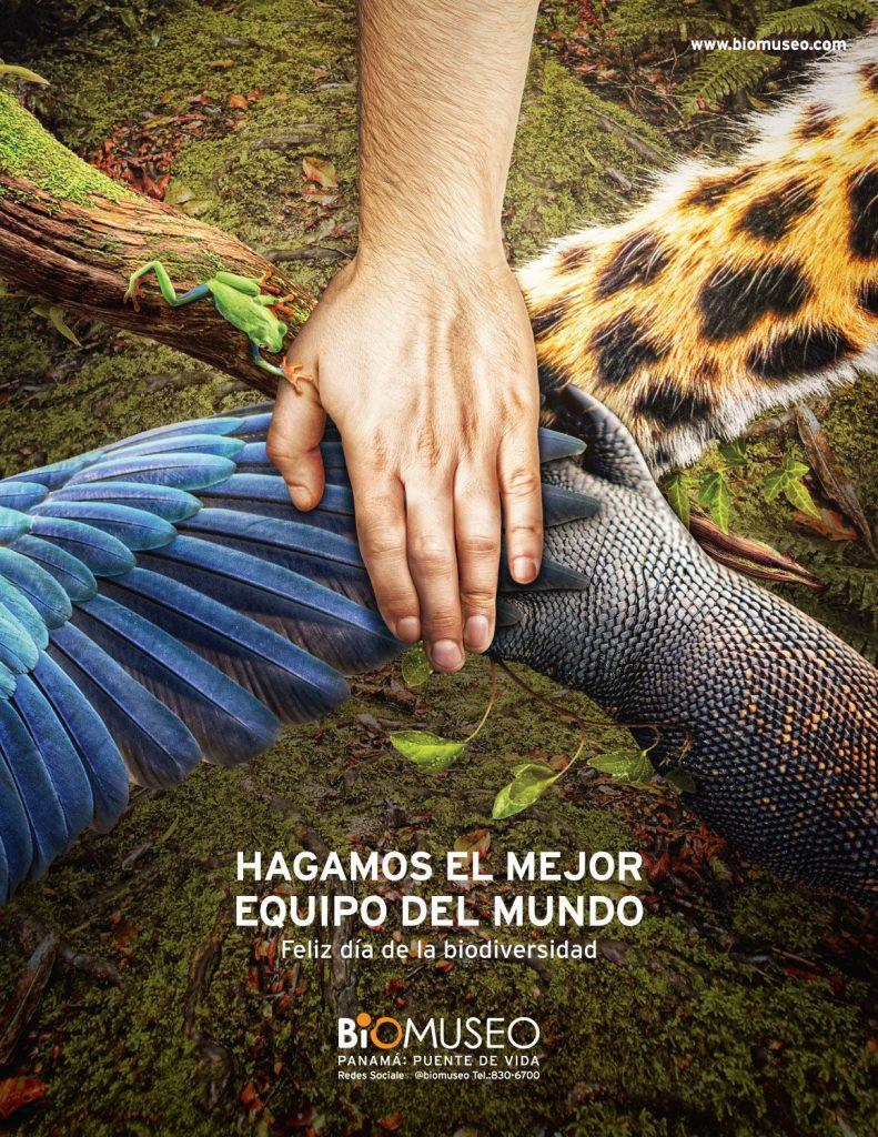 biomuseo panama publicidad
