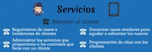 CRM servicios